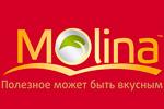 Все товары MOLINA