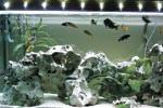 Запчасти и аксессуары для освещения аквариумов