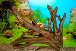 Искусственные коряги для аквариумов