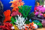 Декоративные элементы и композиции для аквариумов