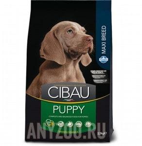 Купить Cibau Puppy Maxi Чибау сухой корм для щенков крупных пород