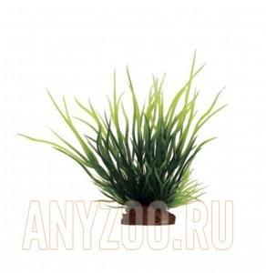 ArtUniq Lilaeopsis Set 6x10