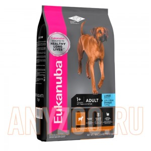 Eukanuba Dog Adult Large Breed Lamb & Rice
