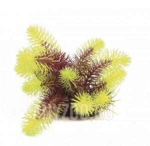 фото ArtUniq Pogostemon erectus red-yellow Искусственное растение Погостемон Эректус красно-желтый