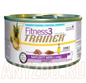 Trainer Fitness 3 Adult Mini Maturity