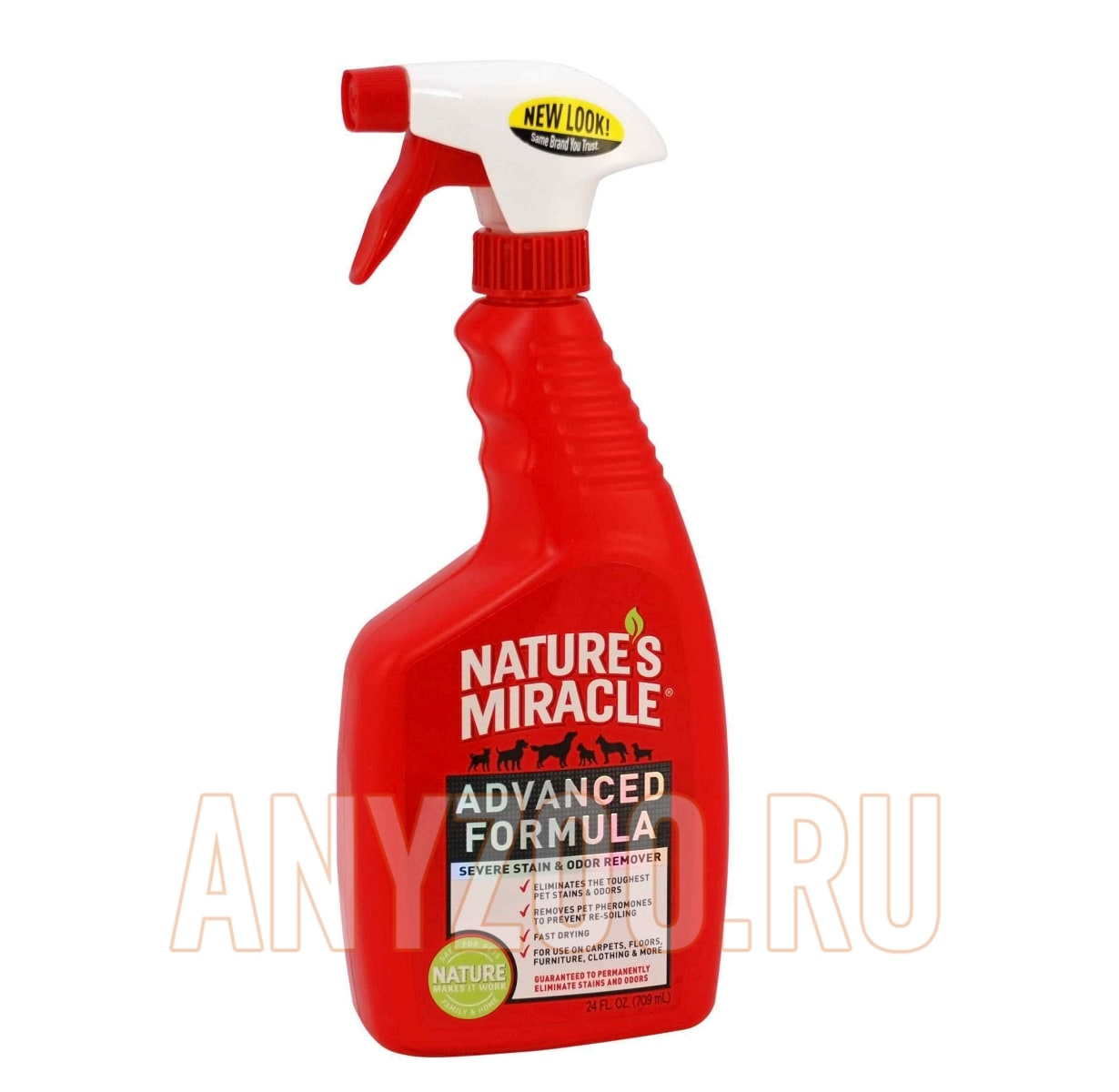 What is the best cat odor remover