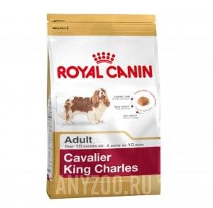 Купить Royal Canin Cavalier King Charles Adult Роял Канин корм для собак породы Кавалер-кинг-чарльз