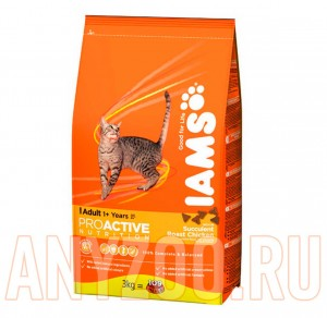 Iams Adult with Chicken
