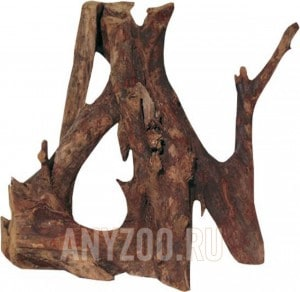 JBL Mangrove
