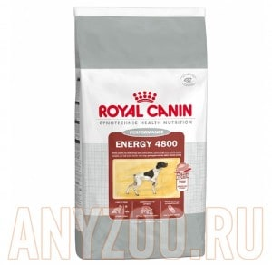Royal Canin Energy