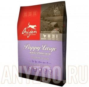 Orijen Puppy Large breed 80/20
