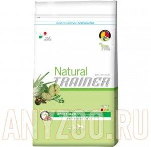 Купить Trainer Natural Adult Maxi Beef Riso Genseng Сухой корм для собак крупны пород Говядина рис женшень