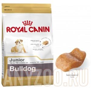 Купить Royal Canin Bulldog Junior- Роял Канин для щенков Английского бульдога до 12 месяцев