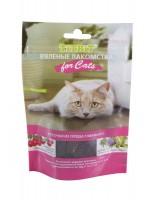 фото Титбит 005156 Вяленые лакомства Кусочки из сердца говяжьего для кошек