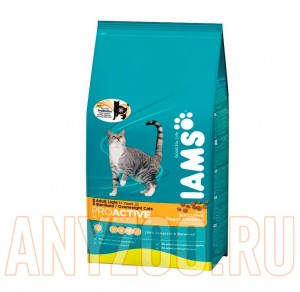 Iams Adult Sterilised with Chicken