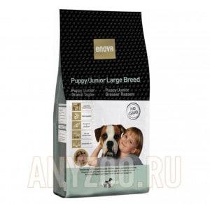 Enova Puppy/Junior Large Breed