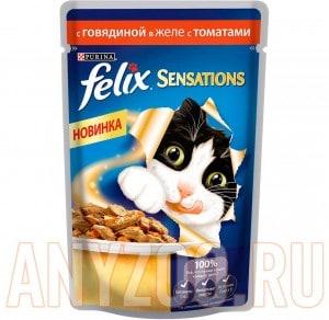 Felix Sensetions