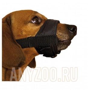 Дарелл намордник для собак нейлоновый регулируемый