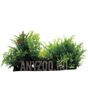 ArtUniq Moss with Plant Mix