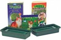 Травка для проращивания для кошек в лотке