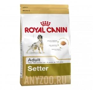 Купить Royal Canin Setter - Роял Канин сухой корм для Сеттеров старше 12 месяцев
