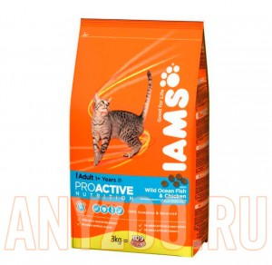 Iams Adult with Ocean Fish