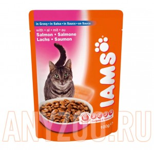 Iams Adult with Salmon