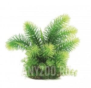 фото ArtUniq Pogostemon erectus Искусственное растение Погостемон эректус