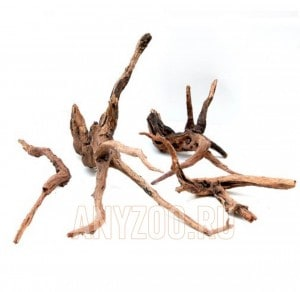 ADA Horn Wood XL