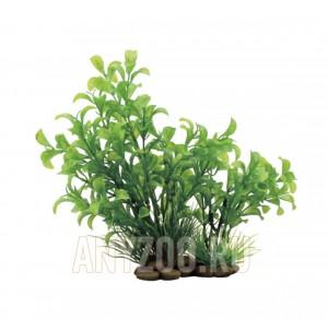 ArtUniq Ludwigia green