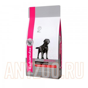 Eukanuba Dog BN Labrador Retriever