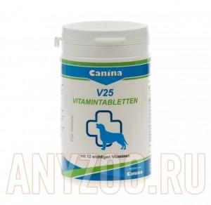 Canina V25