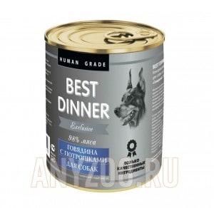 Best Dinner Exclusive Gastro Intestnal