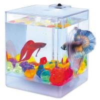 Аквариум  Aqua Box Betta  для петушков 1,3л