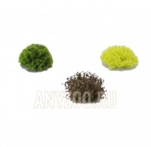 "Комплект из 3-х растений из пластика ""Half-Ball"""