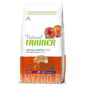 Trainer Natural Medium Adult