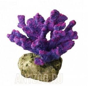 Декоративный пальчиковый коралл лиловый