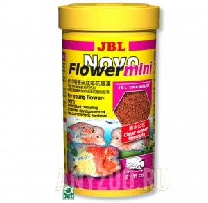 JBL NovoFlower mini