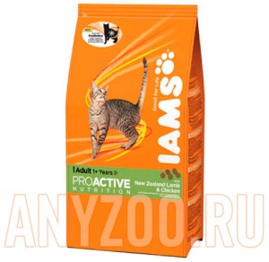 Iams Adult with Lamb