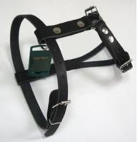 Аркон 32194 Шлейка кожаная, размер 45-64см*20 мм, цвет черный, однослойная кожа