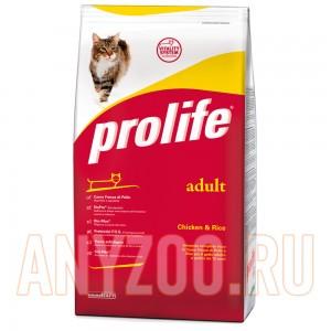 Prolife Adult