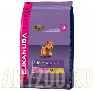 Eukanuba Dog Puppy & Junior Small