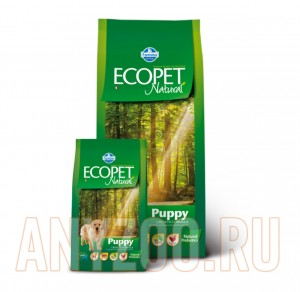 Ecopet Natural Pappy