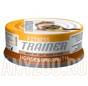Trainer Fitness Adult Horse