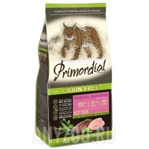 Primordial Kitten