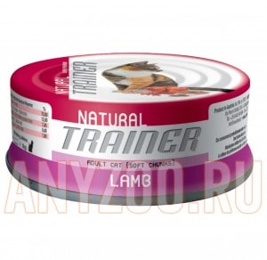 Trainer Natural Adult Lamb